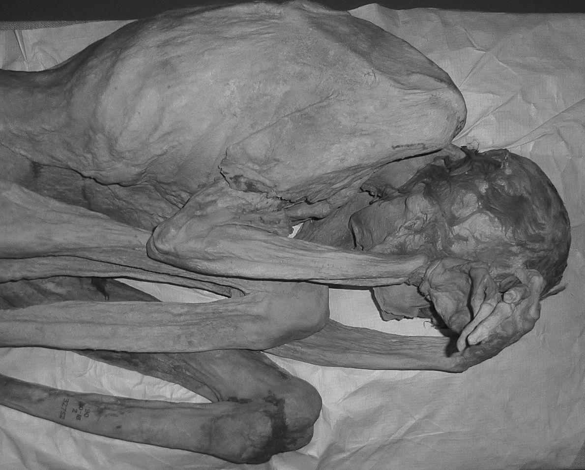 La Mujer de Gebelein también fue analizada bajo la luz infrarroja.