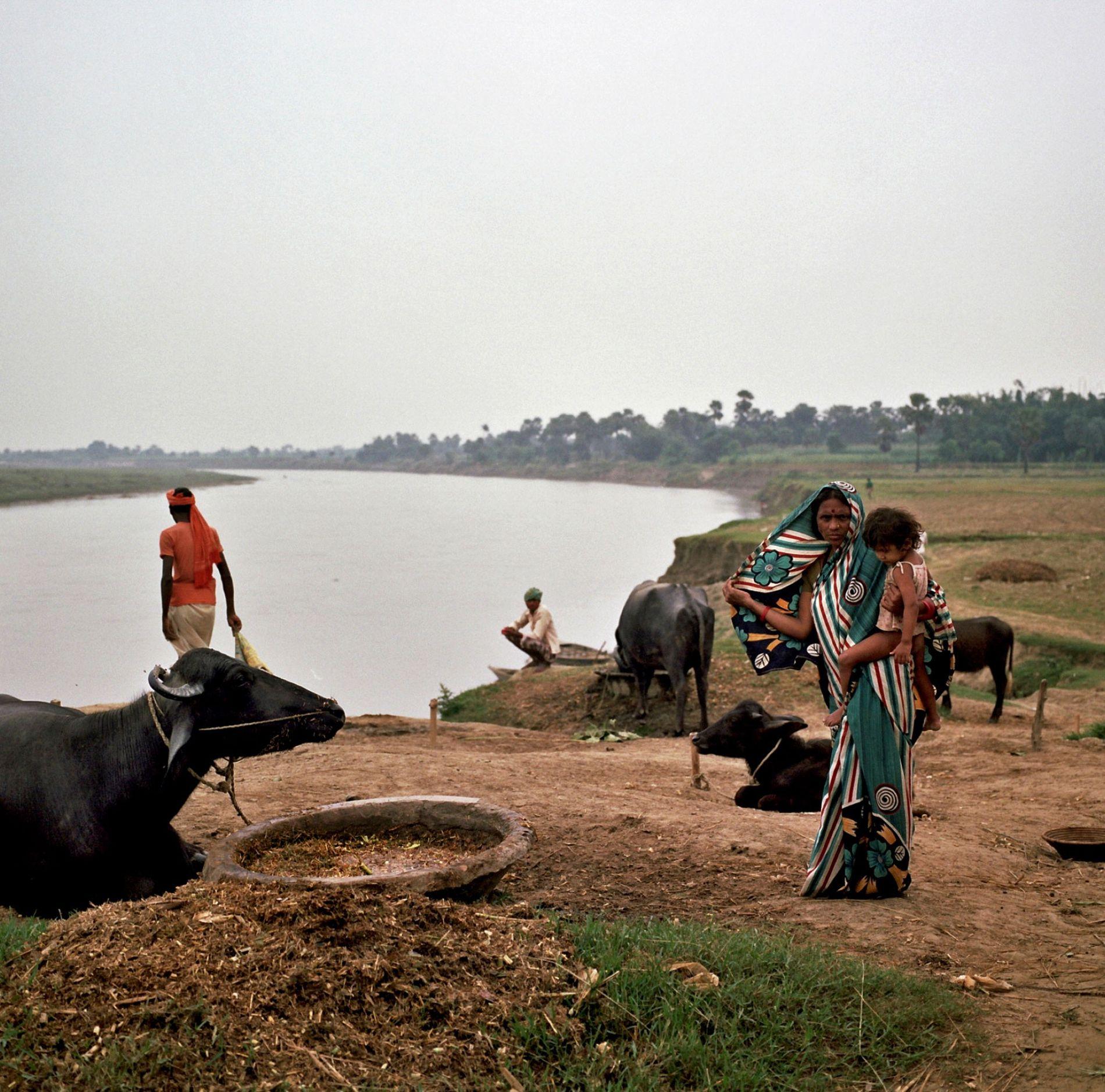 El río Ganges serpentea por el estado de Bihar. Aquí, en 1917, en una de sus ...