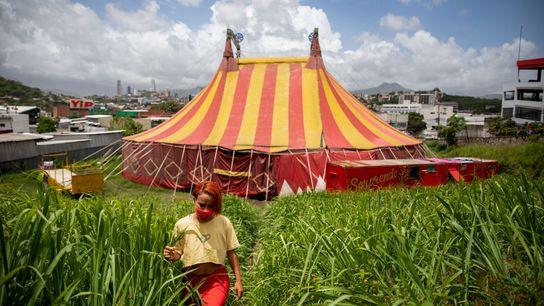 Durante cuatro meses, Lilian Segovia y el resto del Circo Hermanos Segovia vivió entre los restos ...