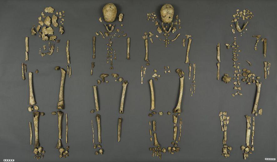 Cuatro hombres que jugaron un papel importante en el desarrollo de Jamestown, el asentamiento permanente más antiguo de Gran Bretaña en América, fueron identificados de manera concluyente en 2015.