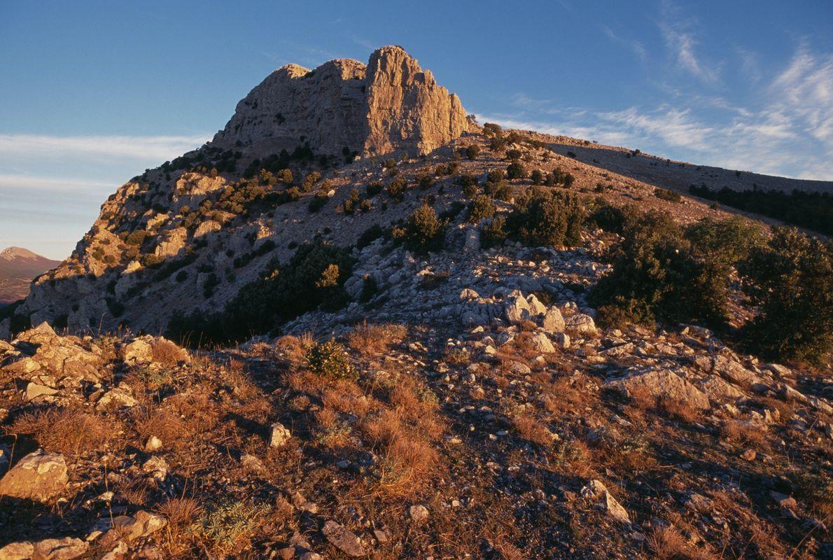 Las altas y remotas cumbres montañosas del parque nacional de Pollino han ayudado a conservar el ...