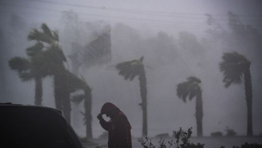 Imágenes de lo que el huracán Michael dejó a su paso