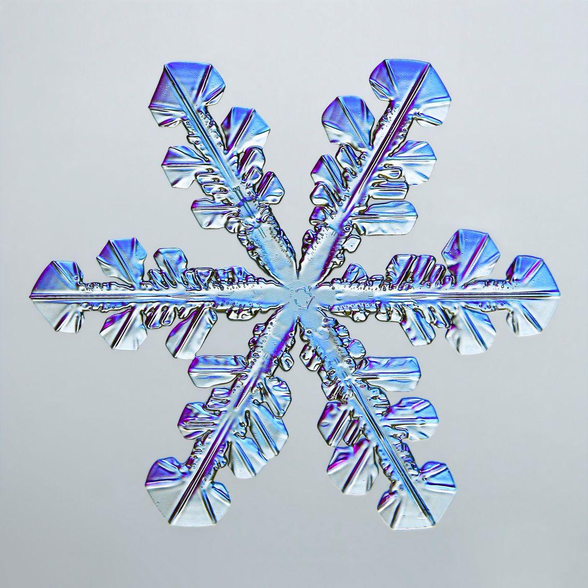 Esta imagen tomada por Caleb Foster, de Vermont, muestra las numerosas facetas hexagonales de un brillante …