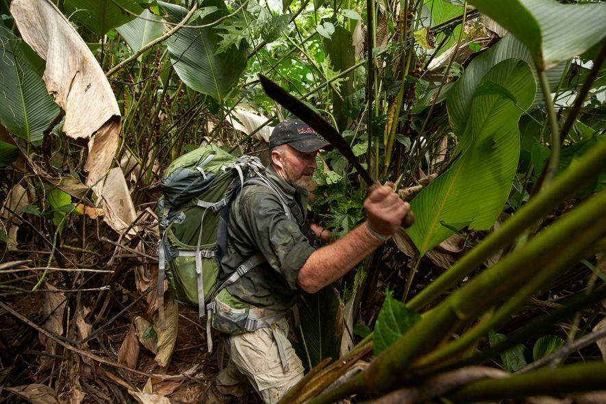 Andrew Wood, ex-soldado del SAS corta el espeso follaje para abrir paso a los científicos que ...