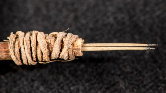 Arqueólogos identifican una aguja para tatuar de 2.000 años de antigüedad