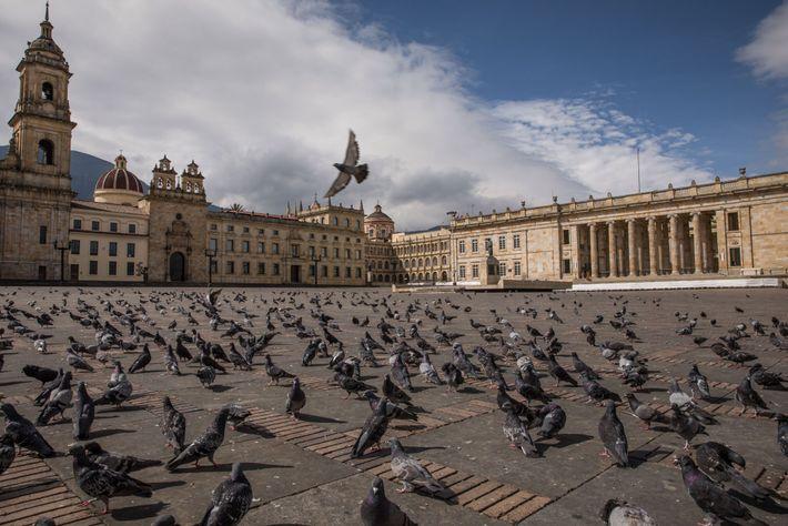 El silencio impregna la Plaza de Bolívar, la plaza principal de Bogotá, que normalmente está animada ...