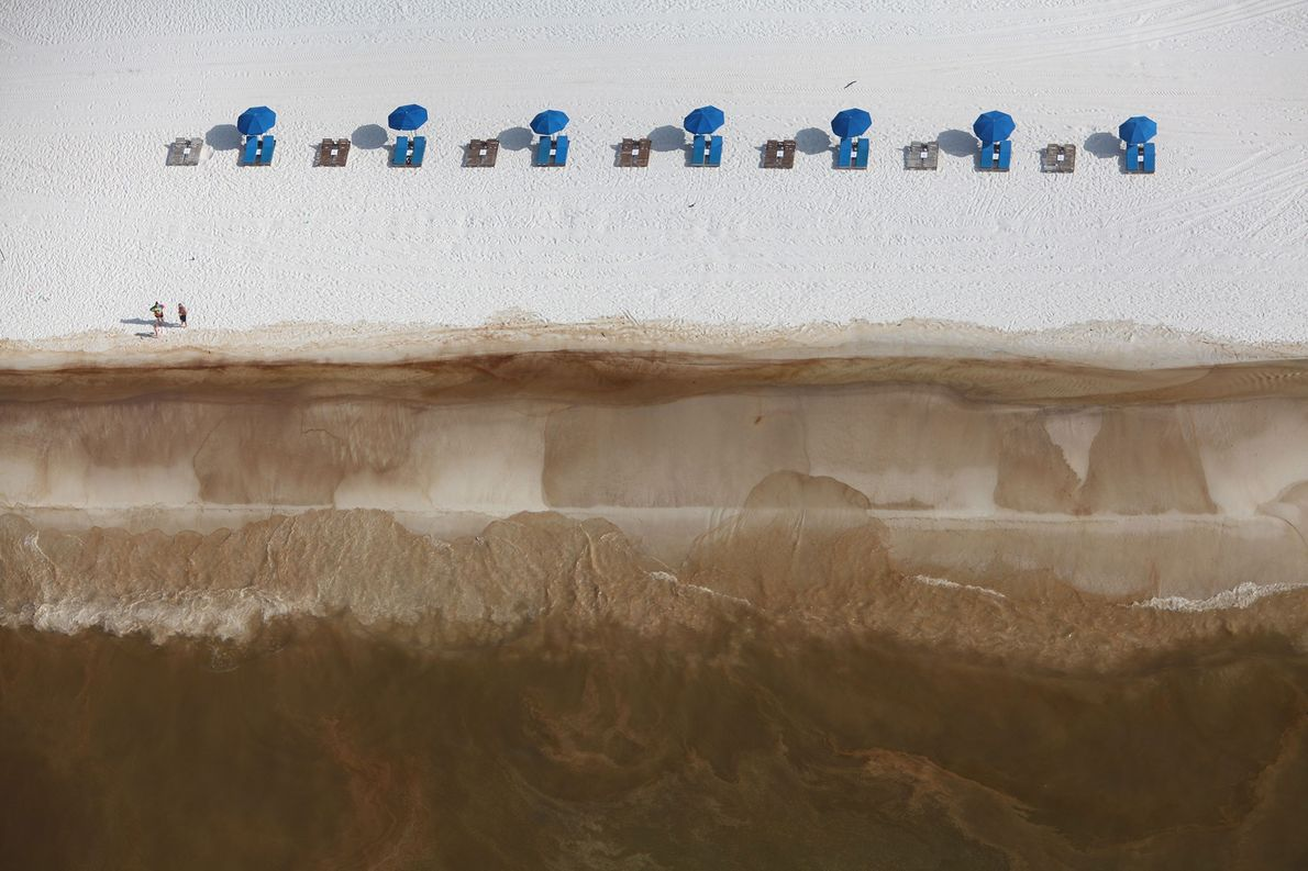 Arenas blancas cubiertas de crudo en Orange Beach, Alabama. Del artículo de octubre de 2010 de ...