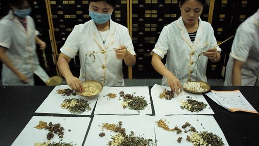 Este time-lapse muestra lo que hay dentro de un remedio de té de hierbas