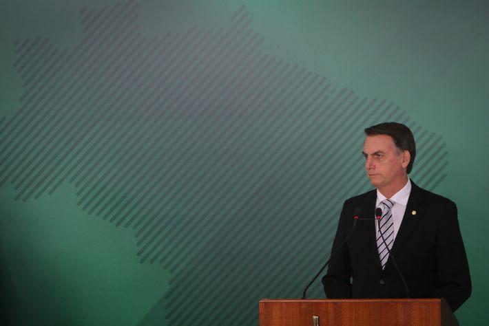 Jair Bolsonaro, presidente electo de Brasil, participó en parte de una campaña de desarrollo del Amazonas, ...