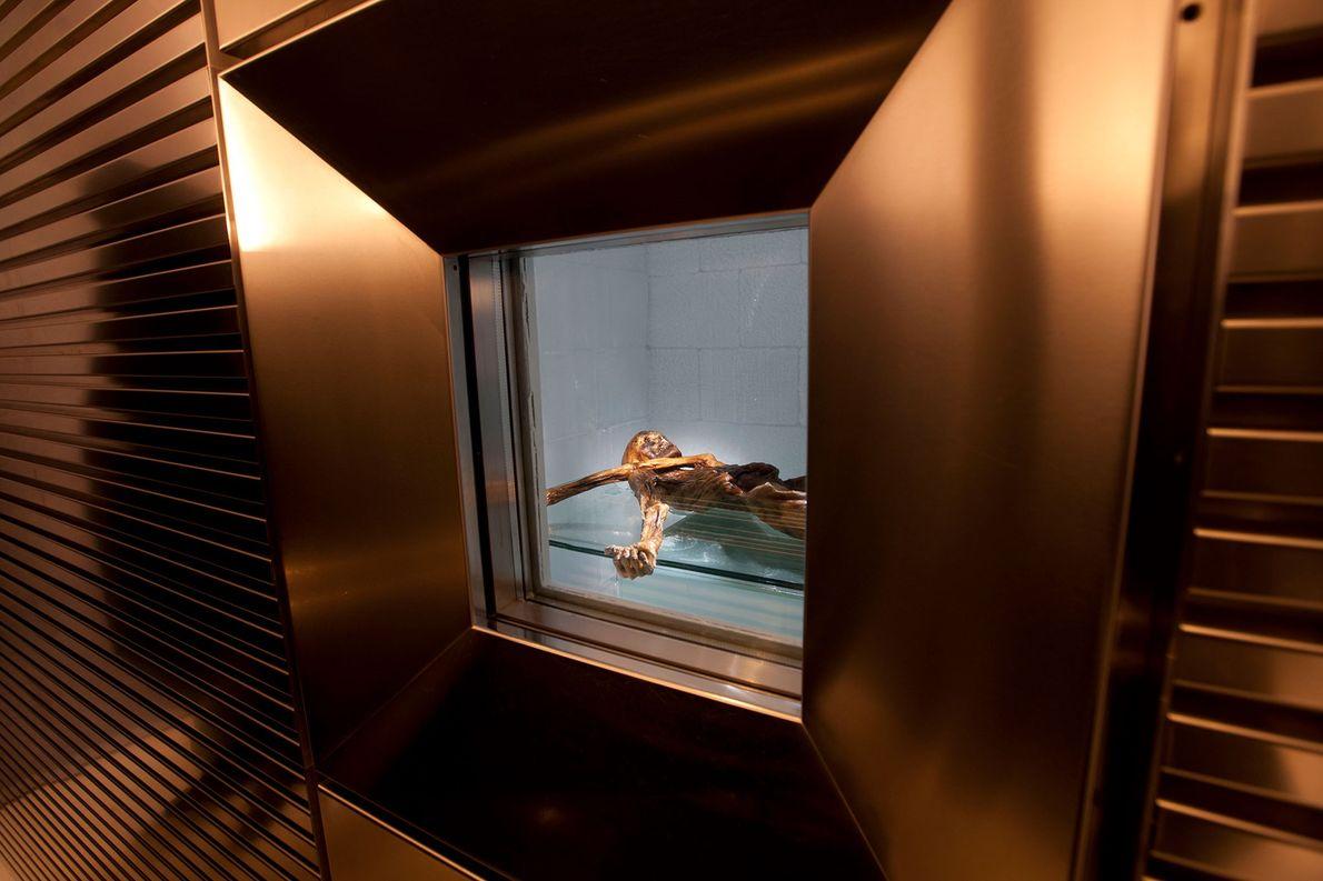 Ötzi y sus utensilios han sido exhibidos en el Museo de Arqueología del Tirol del Sur ...