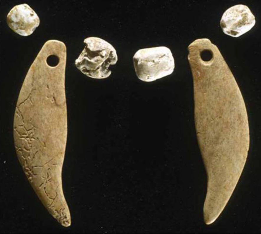Un lince joven adornado con un collar de conchas y dientes de oso y enterrado en un montículo de origen nativo estadounidense es el primer entierro de un gato salvaje adornado en aparecer en el registro arqueológico.