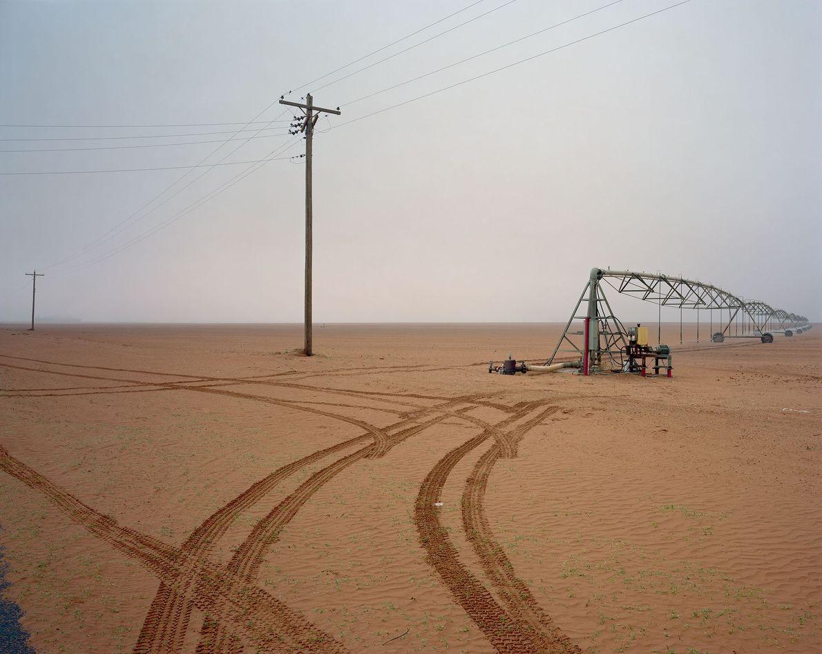 Se usan pivotes centrales para regar los cultivos de algodón al sur de Brownfield, Texas. Del ...