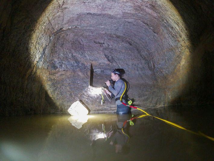 La subdirectora Abagail Breidenstein examina un nicho en la pared de la tercera cámara funeraria de ...