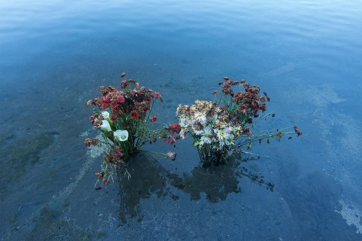 Flores de una ceremonia maya en la Laguna de Chicabal. Esta laguna, ubicada dentro del cráter ...