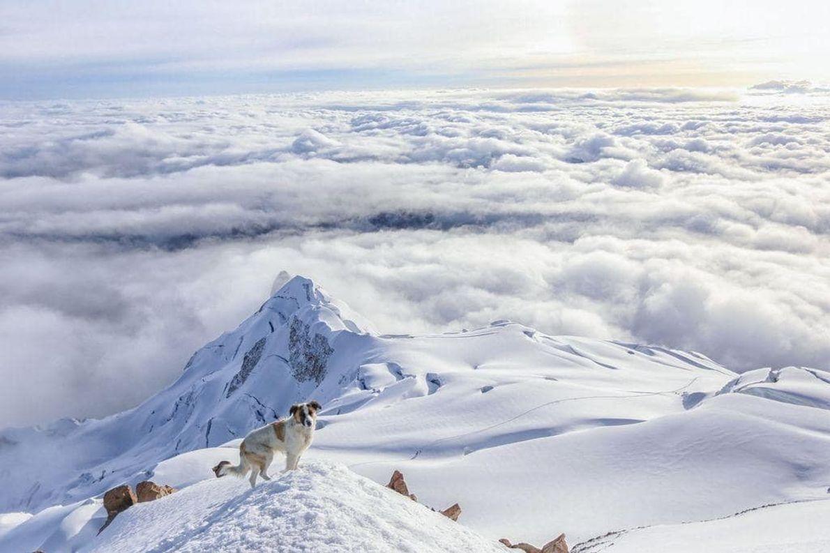 Llegué a la cima del Huayna Potosí, en Bolivia, y me quedé sorprendida al ver un ...