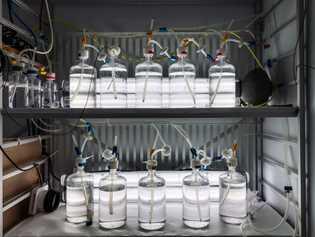 En el interior, las muestras de agua de mar en el Laboratorio Marino de Kings Bay ...