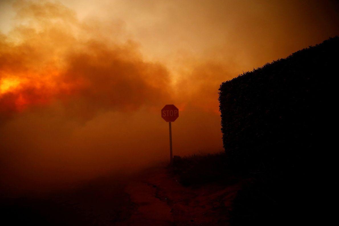 El incendio de Woolsey arde en Malibú, California, el 9 de noviembre.