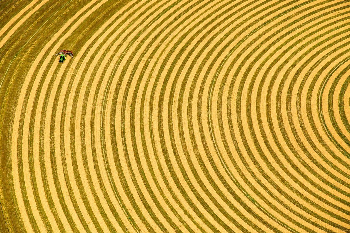 El riego por pivote debe realizarse en forma circular. Visto desde arriba, un granjero rastrilla heno ...