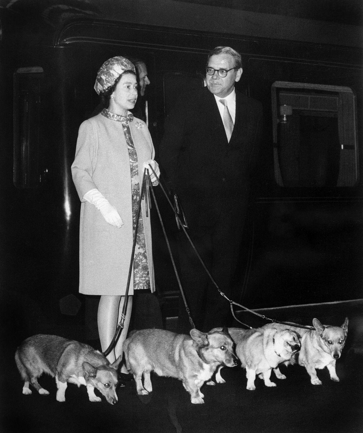 La reina no puede vivir sin sus corgis. Su padre le presentó a la futura monarca ...
