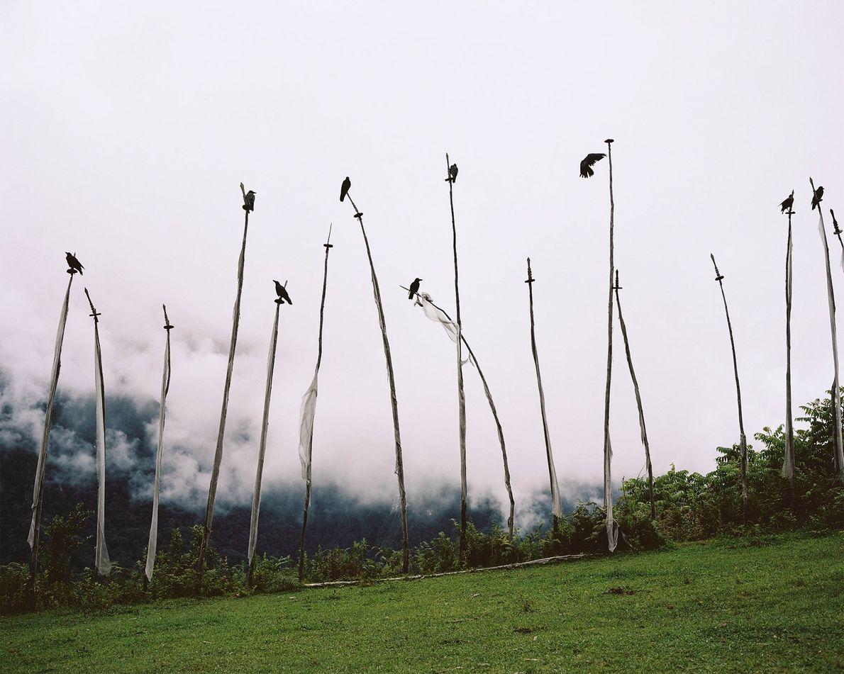 Estas banderas blancas representan las almas de los muertos en Gasa, Bután.
