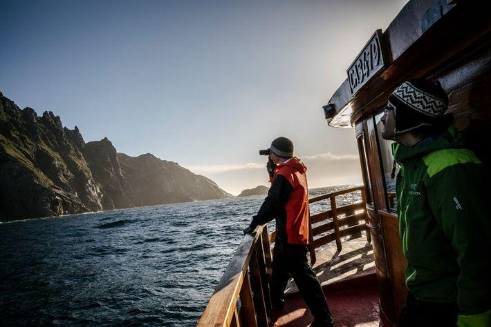 En busca de árboles en la unión del Atlántico y el Pacífico, los ecologistas Brian Buma ...
