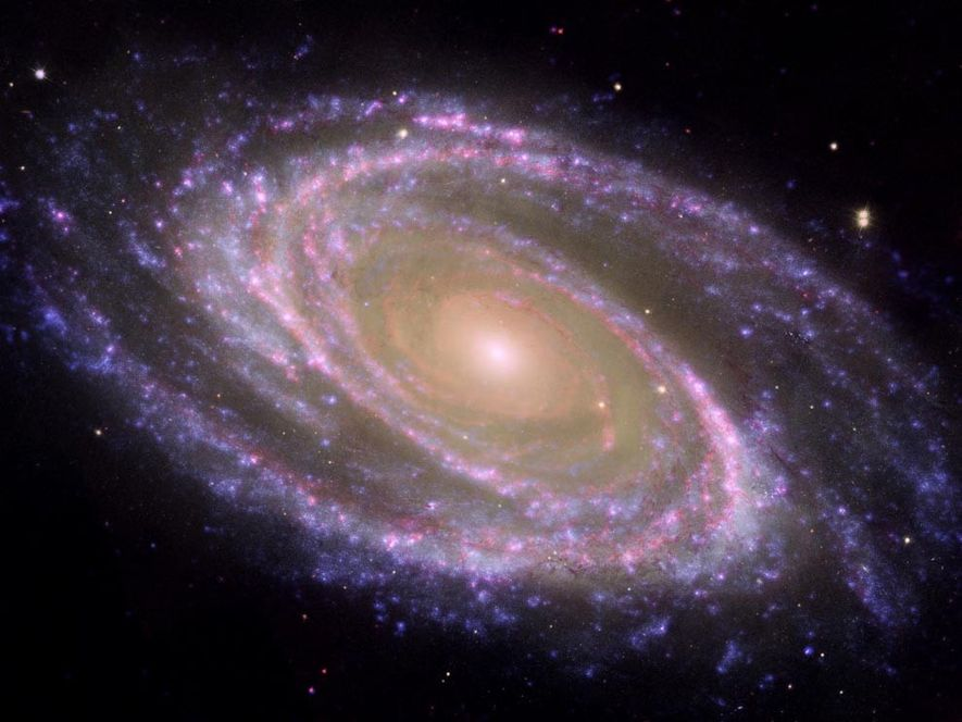 Una imagen compuesta de la galaxia Messier 81 (M81) muestra lo que los astrónomos llaman una ...