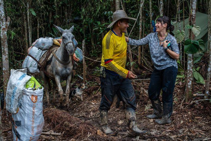 Una mula guía llega al campamento con el equipamiento para la expedición.