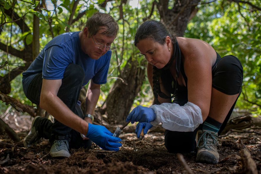 El arqueólogo en residencia de National Geographic Fred Hiebert y el antropólogo Jamie Bach inspeccionan un ...
