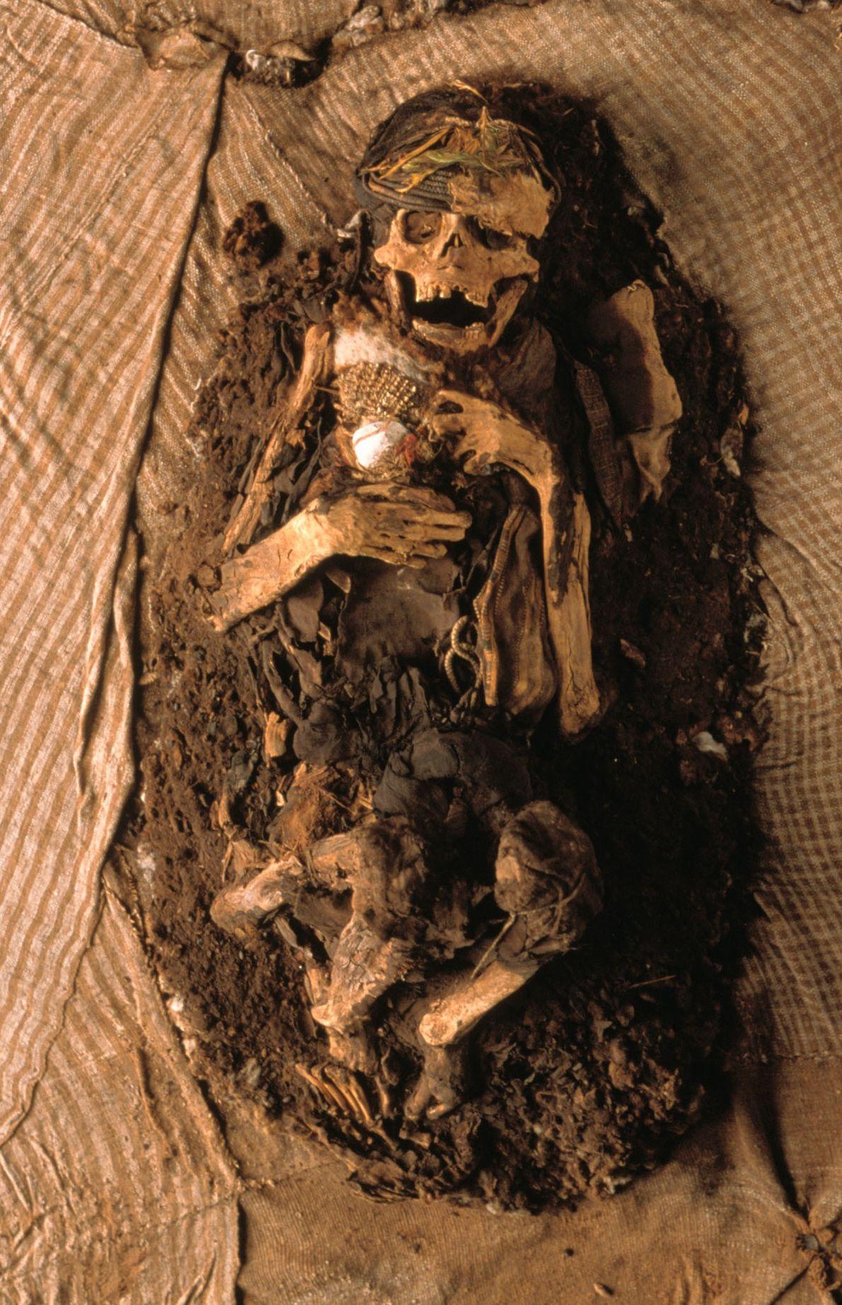 Una momia inca sin envolver en Lima, Perú. Hombres, mujeres y niños serían envueltos en yardas ...