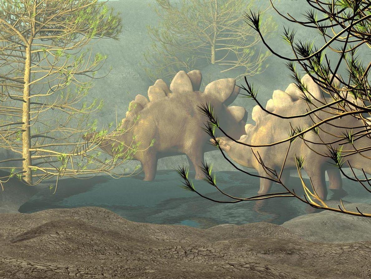 Los Estegosaurios de finales del Jurásico, como la pareja que camina a través de un bosque ...