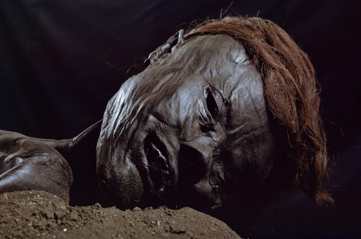 El hombre de Grauballe es una momia natural formada por siglos de inmersión en una turba. ...