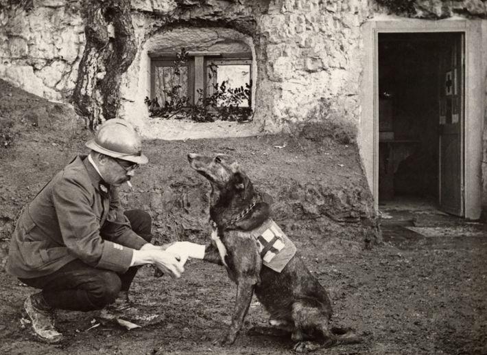 En 1917, Harriet Chalmers Adams fue la primera periodista invitada a visitar los frentes franceses de ...