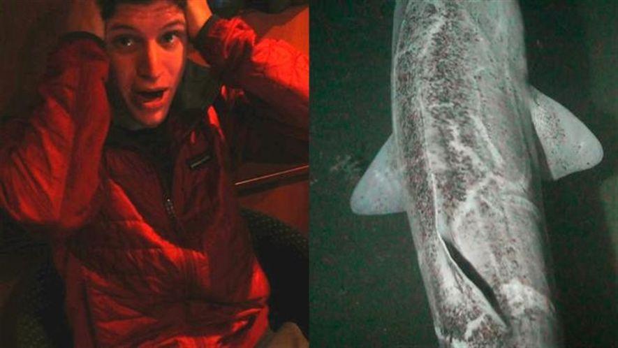 Un inesperado tiburón le da a este explorador el shock de su vida