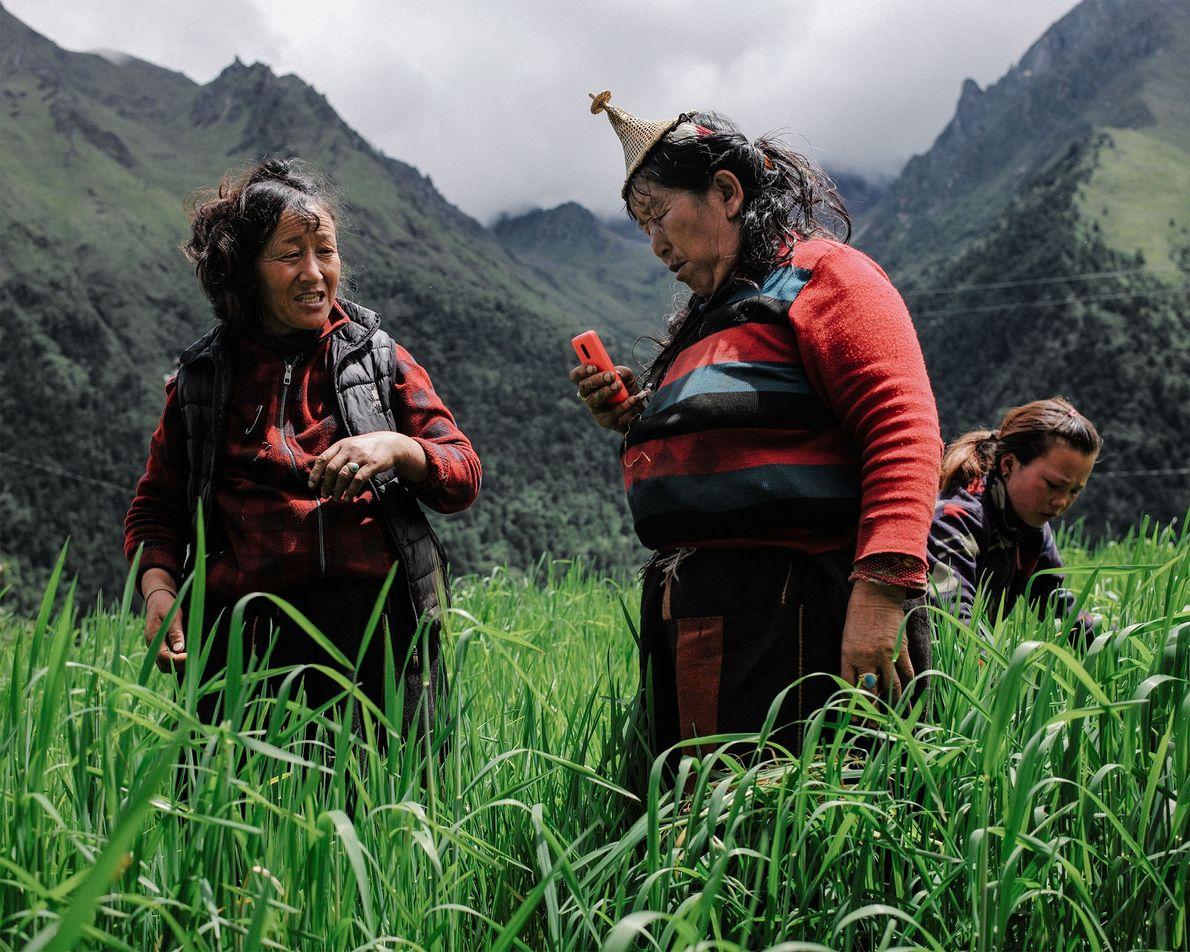 Dos agricultoras se toman un descanso de su trabajo en un campo de arroz en Laya ...