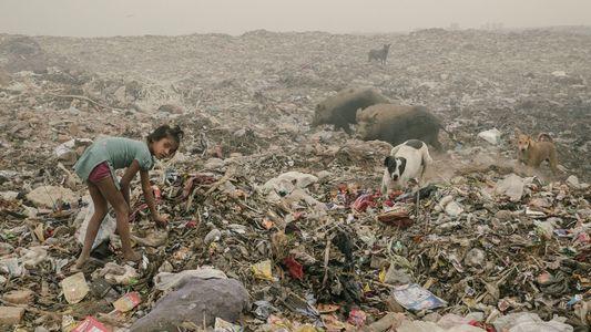 Delhi: Cómo se vive en la ciudad más contaminada del mundo II