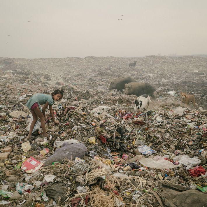 delhi_contaminacion_15