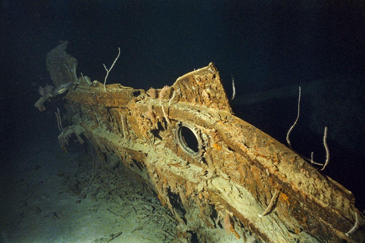 Un fragmento del casco del Titanic descansa en el fondo del océano. El iceberg dañó 91 ...