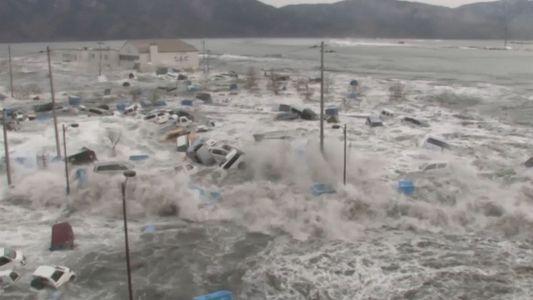 ¿Por qué se producen los tsunamis?