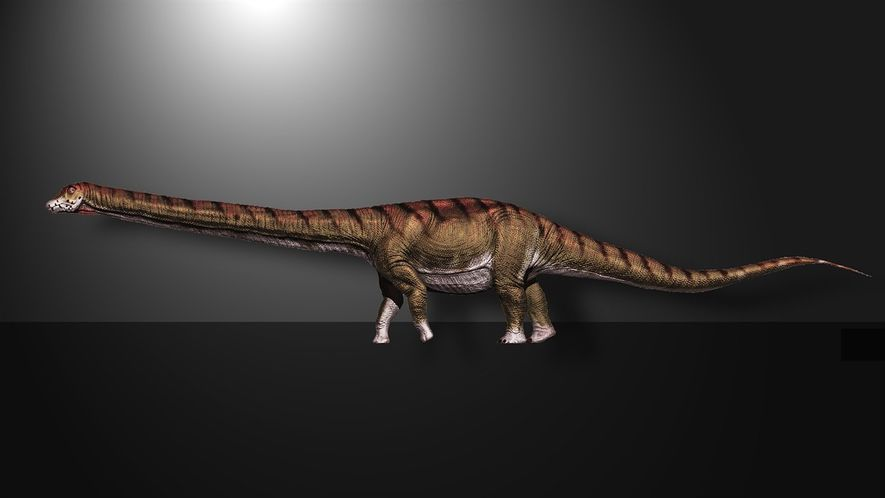 Mira ahora: el dinosaurio más grande jamás encontrado