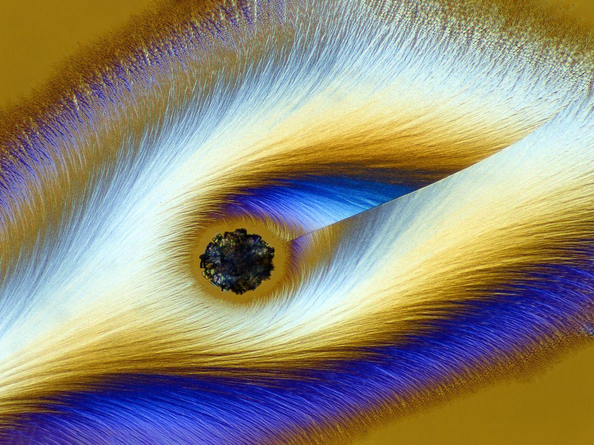 El fotógrafo alemán Karl Deckart logra que la vitamina C se vea completamente fantasmagórica bajo un ...