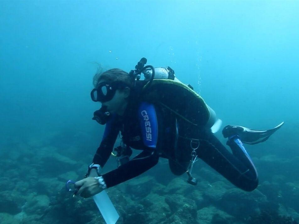 Salvando la biodiversidad del océano: Restauración de los corales