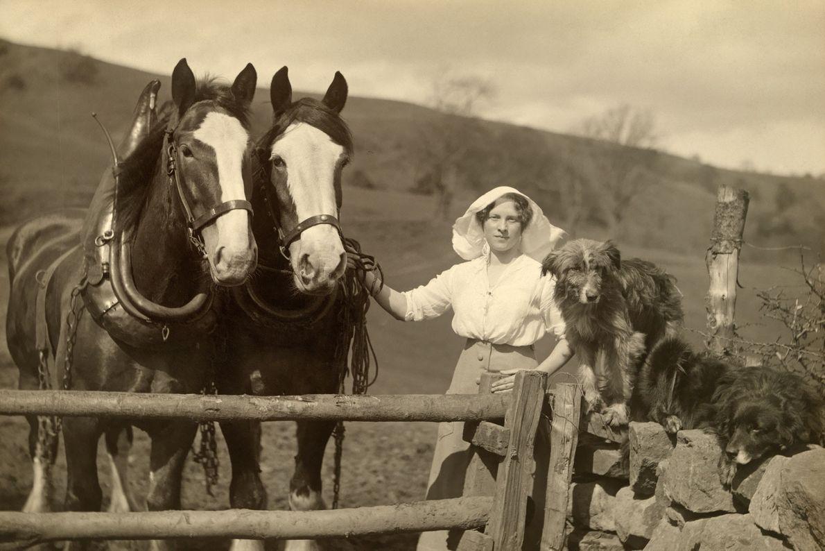 Una mujer se para detrás de una cerca de granja con arados de caballos y perros ...