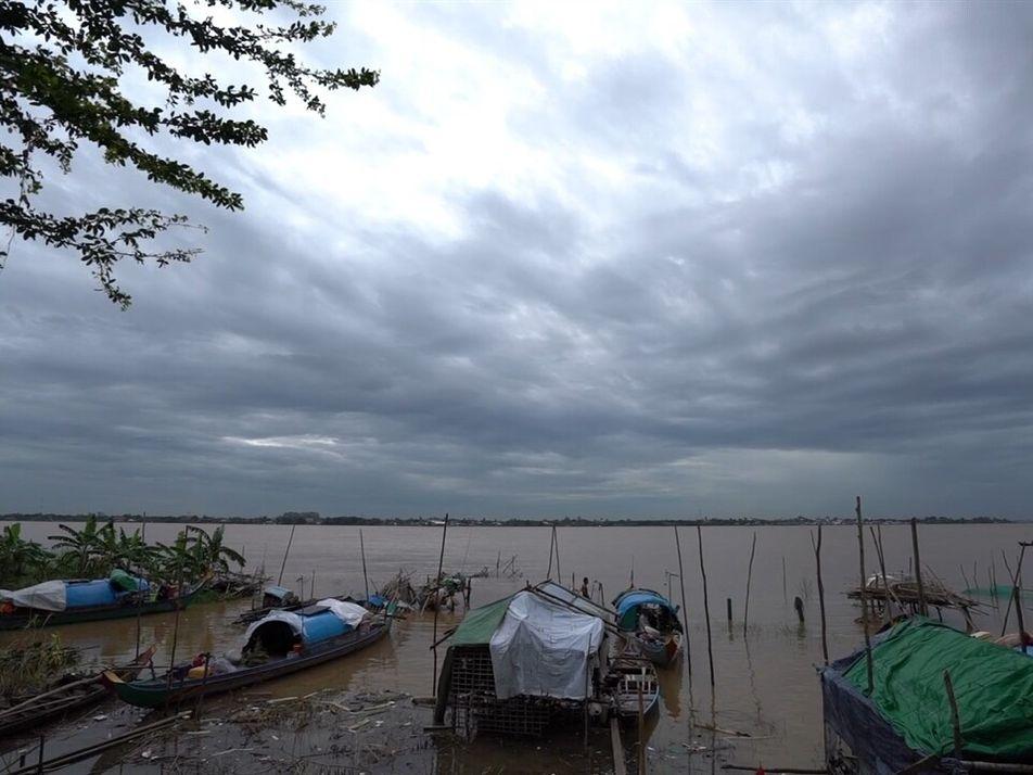 Buscando bebés de bagre gigante en el Mekong