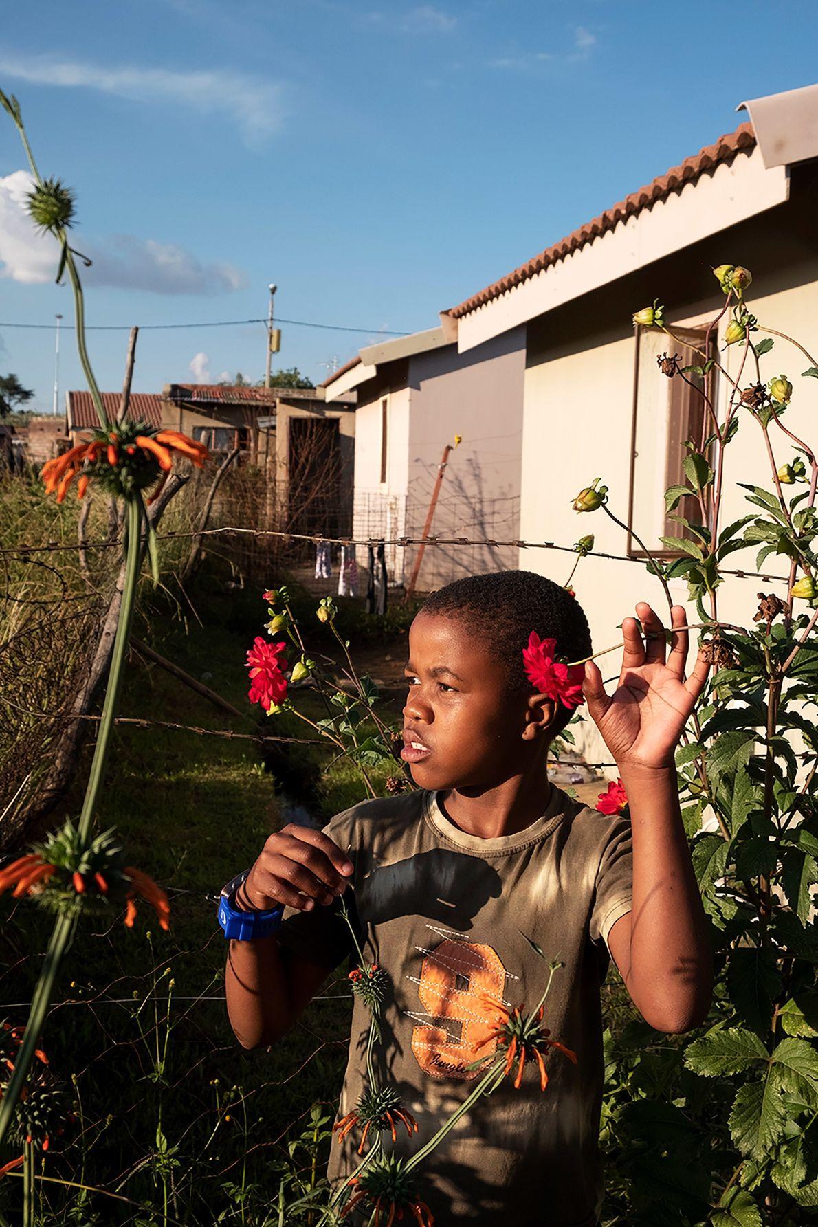 Un niño de Johannesburgo, Sudáfrica, encuentra belleza en las flores silvestres que crecen en el alambre de espino. ...