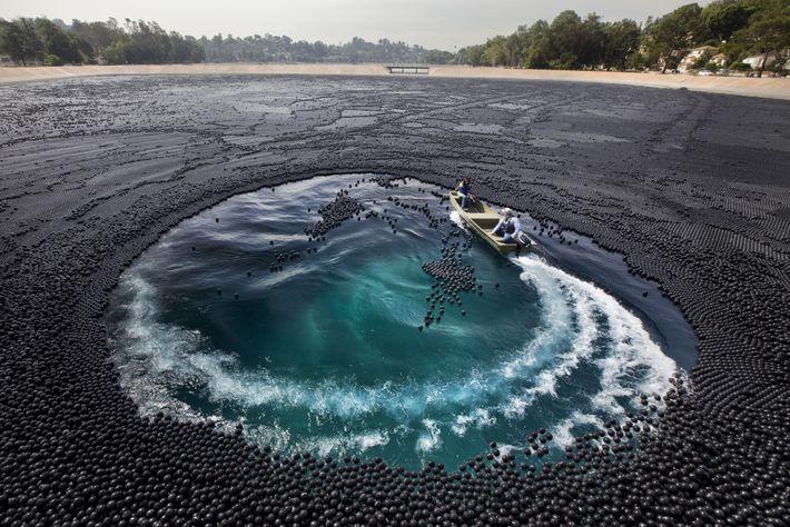 Alrededor de tres millones de bolas de sombra cubrían el Ivanhoe Reservoir en la sección de ...