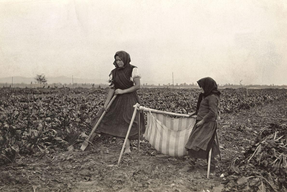 Una madre y su hijo trabajan en un campo mientras un bebé descansa en una hamaca ...