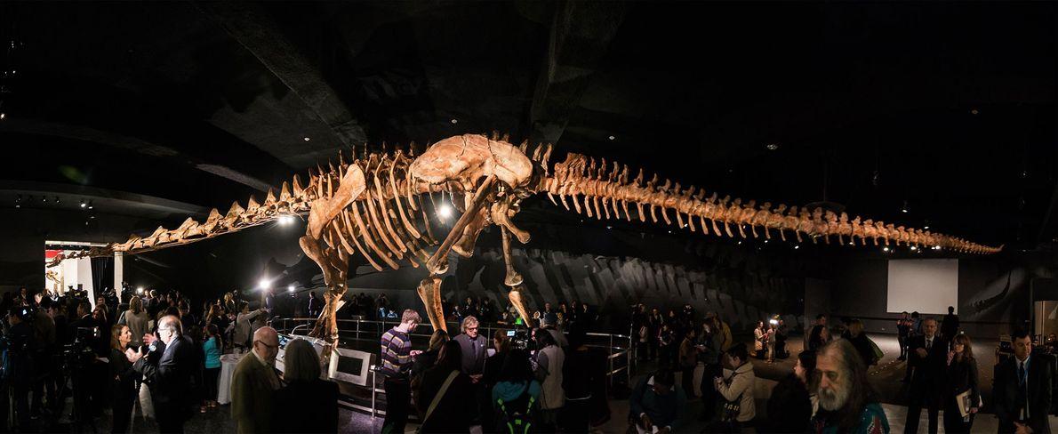 Editada a partir de una serie de imágenes, esta foto muestra la gigante reproducción de un ...