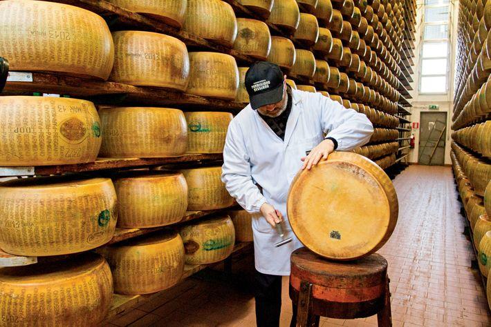 En la Asociación de Productores de Parmigiano-Reggiano de Italia, un maestro examinador prueba la calidad de ...