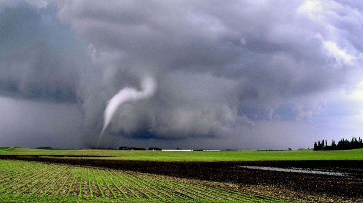 Una delgada nube de embudo sobre un campo en el noroeste de Iowa. Las nubes de ...