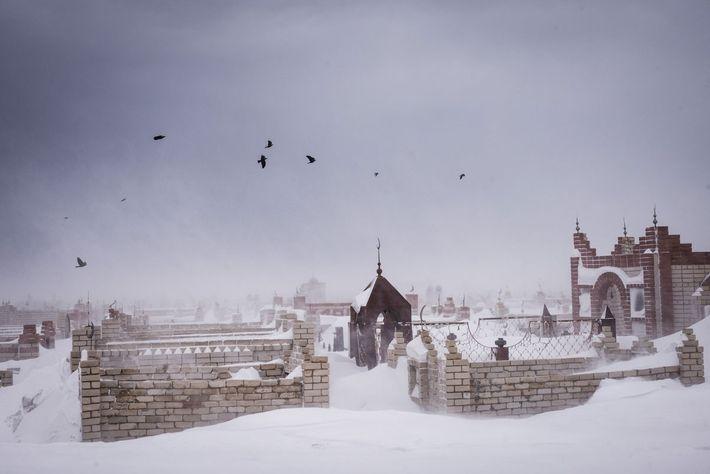 Las aves sobrevuelan el cementerio a las afueras de Semey durante una tormenta invernal.